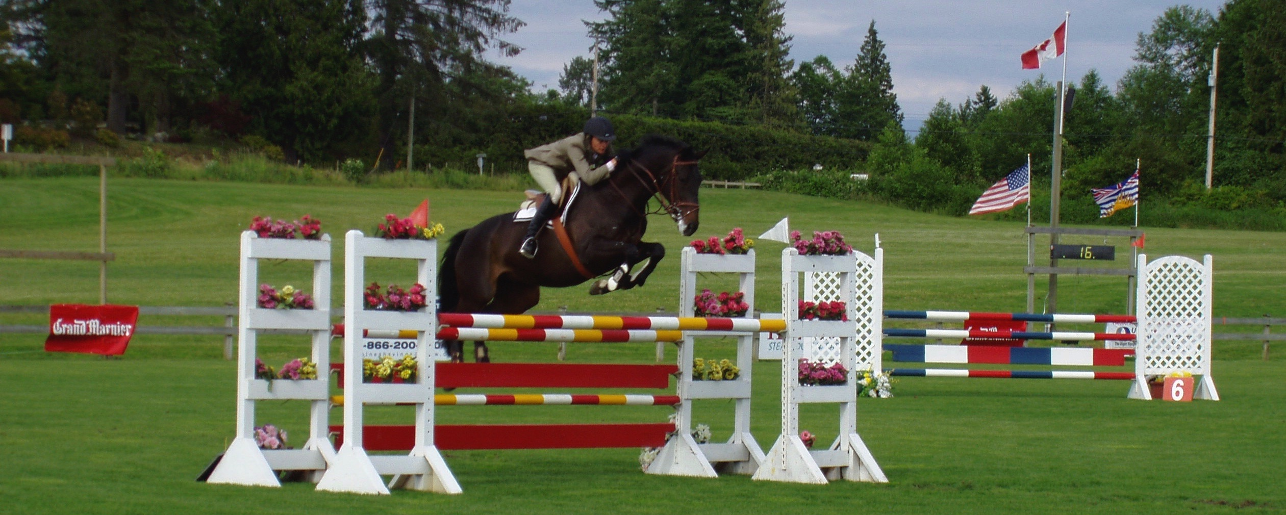 Safe, fun-filled riding lessons, Equine Levels | Twin Rivers ...